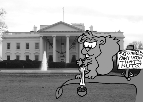 In front of the White House. Skip stands on a branch, with the aforementioned sign nailed to the branch next to him. With a mischievous look on his face, he drops an acorn.